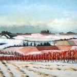 Winterliche Weinberge bei Zornheim